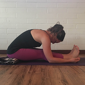seated forward pose