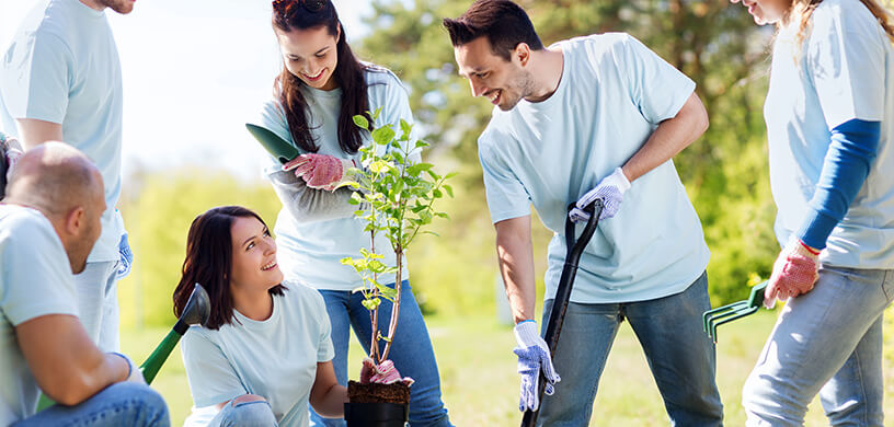 A group of friends planting a tree
