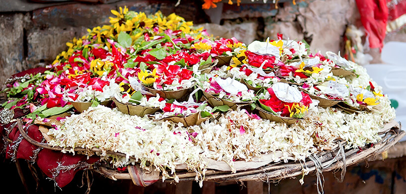 Puja flower offering tradition in India