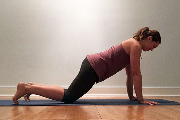 A yoga teacher in supported plank pose